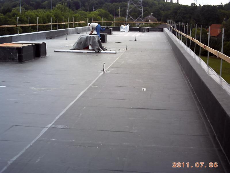 Stogo renovacija 300 m2 2011 m.